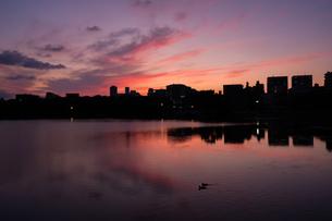 大濠公園夕景の写真素材 [FYI04680821]