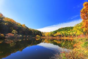 秋の志賀高原 一沼と紅葉の写真素材 [FYI04680942]