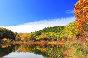 秋の志賀高原 一沼と紅葉の写真素材 [FYI04680943]