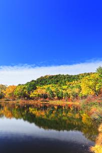 秋の志賀高原 一沼と紅葉の写真素材 [FYI04680944]