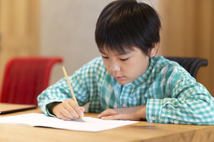 自宅で勉強する男の子の写真素材 [FYI04680947]