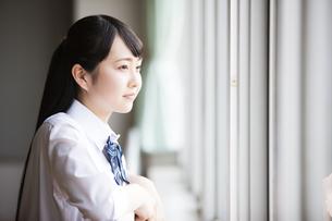 教室から外を眺める女子高生の写真素材 [FYI04681530]