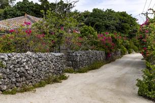 竹富島 古民家集落の写真素材 [FYI04681885]