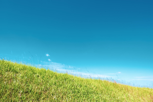 【自然風景】青空の下の草原の丘 背景素材の写真素材 [FYI04682032]