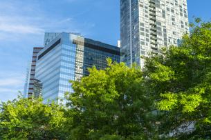 ニューヨーク市 ロングアイランドaニューヨーク市 ロングアイランドシティー クイーンズボロープラザの高層ビル群と新緑。 クイーンズボロープラザの高層ビル群と新緑と道路標識。の写真素材 [FYI04682064]