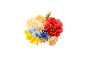 スターチスとカーネーションの花束の写真素材 [FYI04682136]