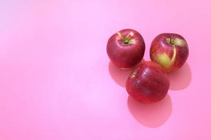 ピンク背景の紅玉りんごの写真素材 [FYI04682137]