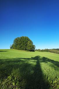 もう一つのマイルドセブンの丘の写真素材 [FYI04682449]