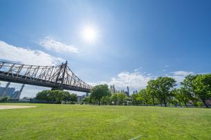 ニューヨーク市 クイーンズ ロングアイランドシティーの新緑に囲まれたクイーンズブリッジパーク。の写真素材 [FYI04682597]