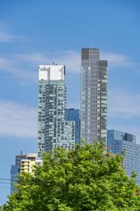 クイーンズ ボローブリッジ橋脚横の新緑越しにそびえ立つニューヨーク市 クイーンズ ロングアイランドシティー クイーンズボロープラザの新興高層ビル群。の写真素材 [FYI04682604]