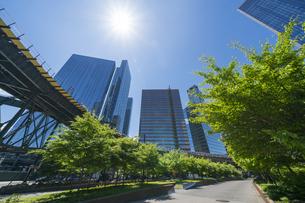 ニューヨーク市 ロングアイランドシティー クイーンズボロープラザの 新緑の並木道沿い高層ビル群の間を走るニューヨーク市地下鉄。の写真素材 [FYI04682629]