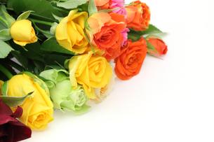 薔薇の花束の写真素材 [FYI04682639]
