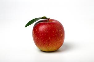 リンゴの写真素材 [FYI04683184]