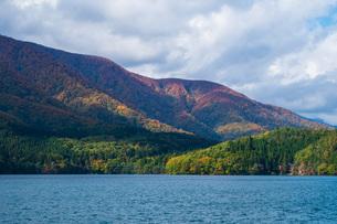 湖と山の紅葉の写真素材 [FYI04683212]