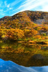 赤城山 覚満淵の紅葉の写真素材 [FYI04683389]