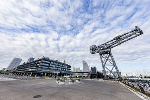 新港ふ頭に立つ産業遺産「ハンマーヘッドクレーン」の写真素材 [FYI04683979]