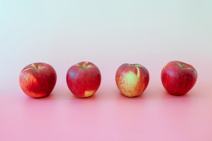 ピンク背景の紅玉りんごの写真素材 [FYI04684013]