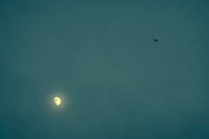 月とカラスの写真素材 [FYI04684120]