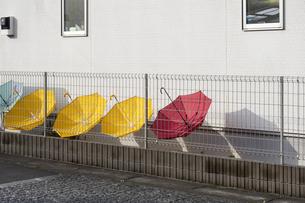 干されるカラフルな傘の写真素材 [FYI04684123]
