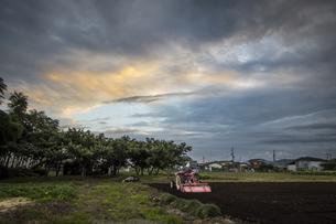 夕焼けと農作業の写真素材 [FYI04684126]