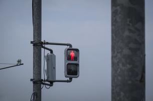 交差点で点灯する止まれ表示の写真素材 [FYI04684135]