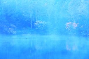 秋の志賀高原 三角池(みすみ池)にカモと霧の写真素材 [FYI04684274]