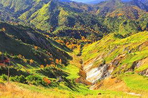 秋の志賀高原の写真素材 [FYI04684297]