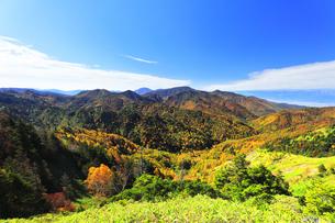 秋の志賀高原 紅葉の山並みの写真素材 [FYI04684305]