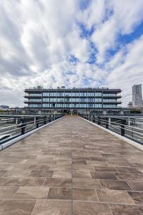 新港ふ頭の新名所、横浜ハンマーヘッドと横浜Pier 8の写真素材 [FYI04684325]