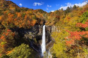 紅葉の華厳の滝の写真素材 [FYI04684344]