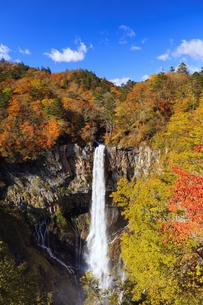紅葉の華厳の滝の写真素材 [FYI04684348]
