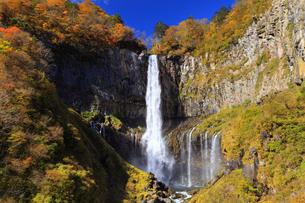 紅葉の華厳の滝の写真素材 [FYI04684350]