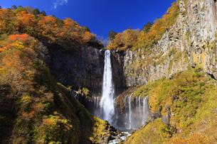 紅葉の華厳の滝の写真素材 [FYI04684351]