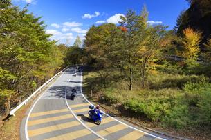 紅葉のいろは坂の写真素材 [FYI04684367]