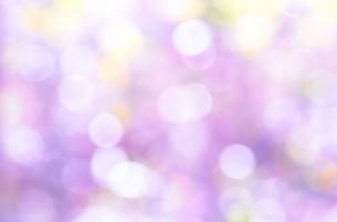 ピンク色と紫色のキラキラ背景素材の写真素材 [FYI04684436]