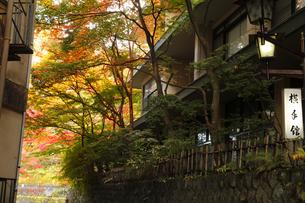 伊香保温泉の旅館 日本旅館のおもむきの写真素材 [FYI04684674]