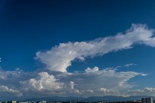 真っ青な空に特徴的な形の白い雲の写真素材 [FYI04684711]
