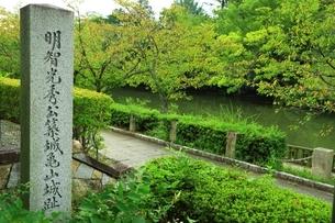明智光秀公築城亀山城趾の石碑の写真素材 [FYI04684816]