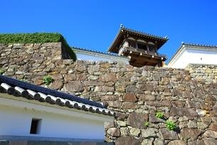 福知山城 石垣(転用石)の写真素材 [FYI04684847]