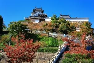 福知山城の写真素材 [FYI04684848]