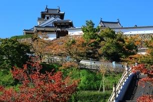 福知山城の写真素材 [FYI04684852]