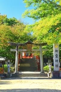 御霊神社の写真素材 [FYI04684861]