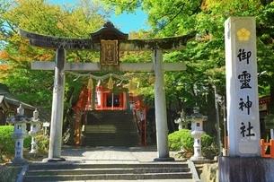 御霊神社の写真素材 [FYI04684864]