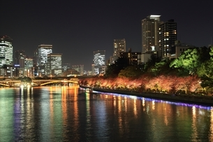大川と大阪ビル街夜景の写真素材 [FYI04684892]