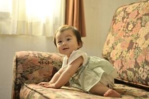 ソファーにいる幼児の写真素材 [FYI04684955]