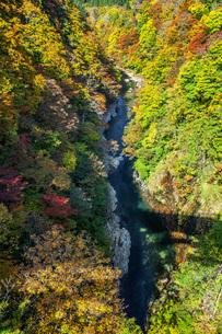 秋の小安峡の写真素材 [FYI04685018]