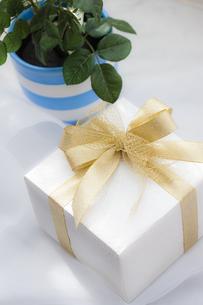 プレゼントBOXの写真素材 [FYI04685419]