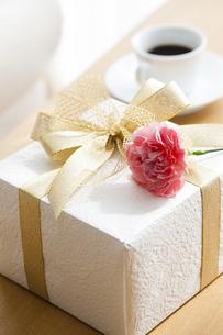 プレゼントBOXとカーネーションの写真素材 [FYI04685435]