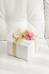 プレゼントBOXとカーネーションの写真素材 [FYI04685436]