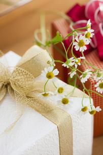 プレゼントBOXの写真素材 [FYI04685441]